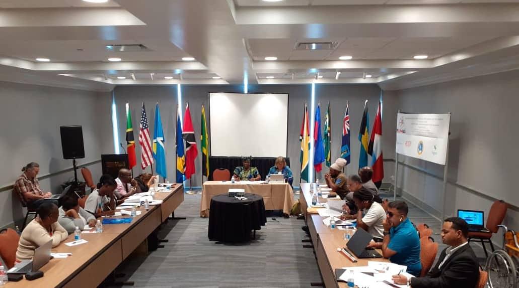 DPI NAC Meeting Held at Royalton Antigua